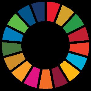 SDG Wheel_Transparent ikon