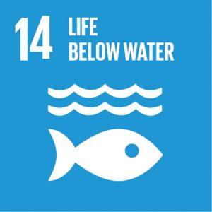 Bærekraftsmål 14, livet under vann